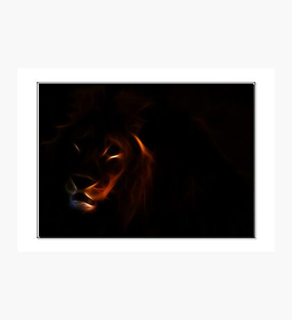 Lion Hearted Photographic Print