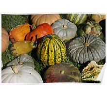 Pumpkin patch 2 Poster