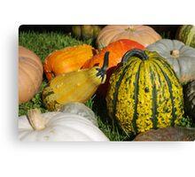 Pumpkin patch 1 Canvas Print