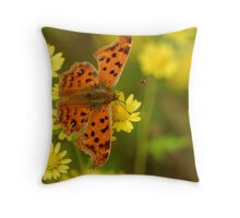 butterfly with daisy Throw Pillow