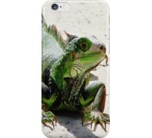 iPhone Case - Iguana iPhone Case/Skin
