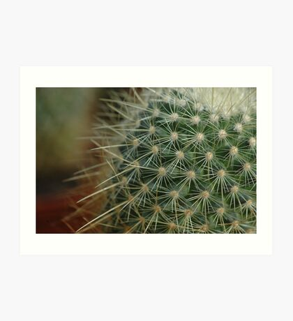 Prickly Pins Art Print