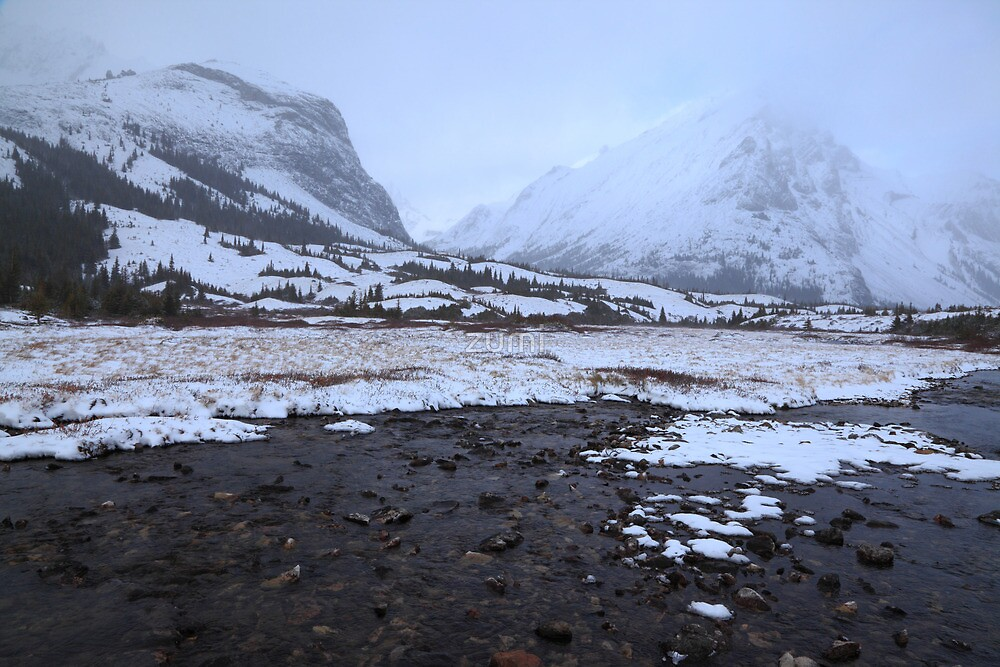 Elbow Pass valley IX by zumi