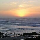 Asilomar Sunset by Sandra Gray