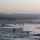 Foggy Asilomar Beach by Sandra Gray