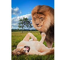 """Mane Attraction"" Photographic Print"