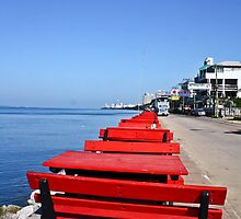 Red Benches By the Beach by vanyahaheights