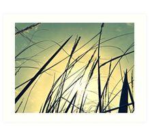 Plant 4 Art Print