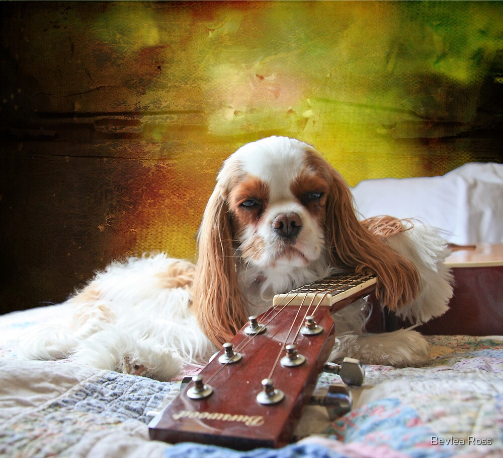 Rough Night - Playin' In A Travelling Band by Bevlea Ross