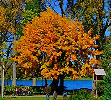 Golden Tree Tegernsee Germany by Daidalos