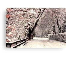 English Snow Scene Canvas Print