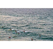 Nippers  Photographic Print