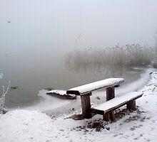 Fog over the Shore by Daidalos