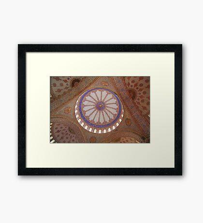 Domed beauty Framed Print