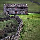 Swaledale field barn by Phillip Dove