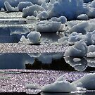 Ice Floes... by LindaR