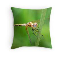 Yellow Dragon Throw Pillow