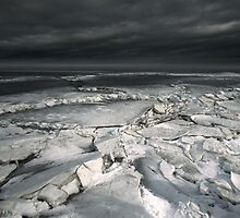 Arctica by dr-feelgood