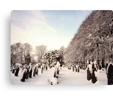 Gravestones & Snow Canvas Print