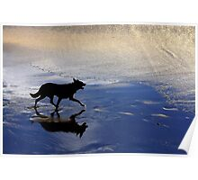 The Black Dog Poster