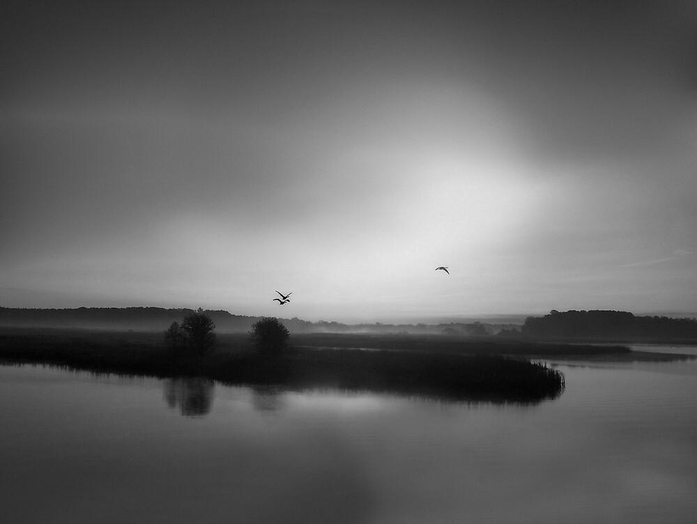 Misty Rising by Kathilee