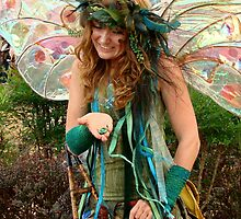 Faeries Delight by Rodney Williams