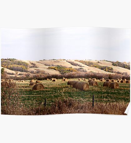 Valley Of The Bales Poster
