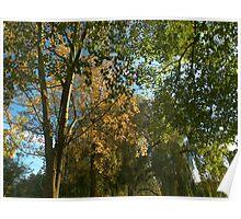 Autumn Varieties Poster