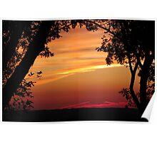 Tree Framed Sunset Poster