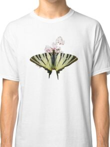 Scarce Swallowtail On Wild Garlic Flowers Vector Isolated Classic T-Shirt