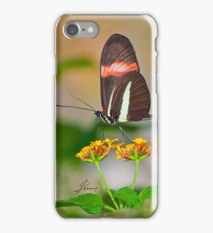 The Postman Butterfly - IPhone case iPhone Case/Skin