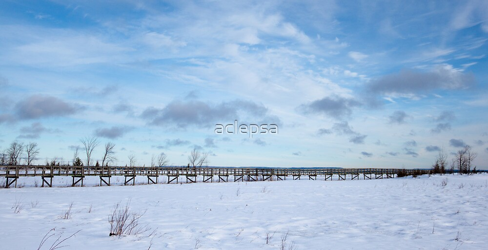 Bridge to Nowhere, Northern Ontario by aclepsa