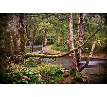 Skookumchuck River Photographic Print