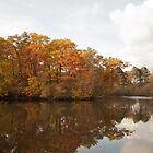 Grenadier Pond, High Park by aclepsa
