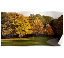 High Park in Fall Poster