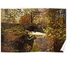 Autumn in Lochaber. Poster