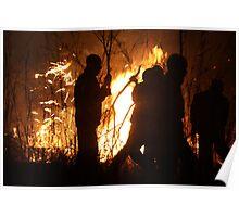 Zimbabwean Bush Fire Poster