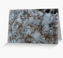 Snow Clouds Greeting Card