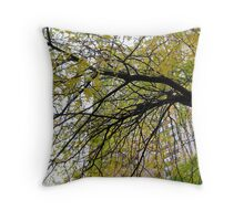 Urban Autumn, New York City  Throw Pillow