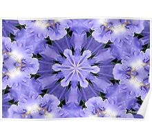 Irises Dance in a Fairy Ring Poster