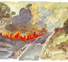 Veldfire in Magaliesburg by Maree Clarkson