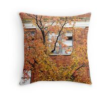 Brick leaves, Autumn in New York City  Throw Pillow