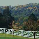 country fence by ANNABEL   S. ALENTON
