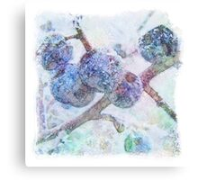 Vibrant Frost 1 with frame Canvas Print