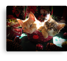 Christmas Basket of Two Kittens in Love ~ Portraits of Kitty Cats in Xmas Scenery w/ Pine Cones, Red Baubles & Poinsettias Canvas Print