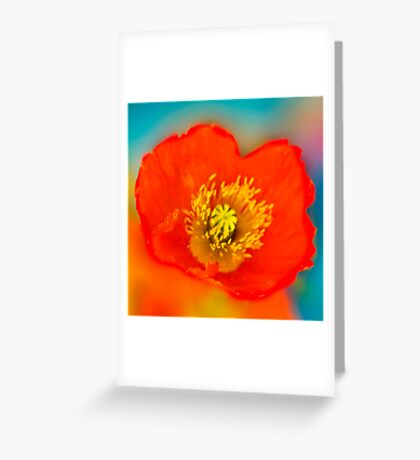 Colour of Life XLI [square] Greeting Card