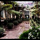 Taking a stroll in the Green House by Bob Culver