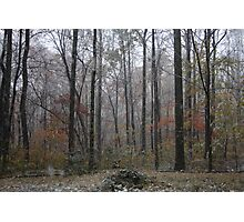 Freaky Fall Weather Beauty 2 Photographic Print