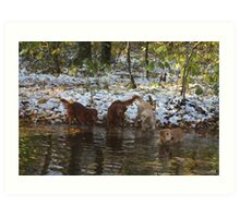 Surprise SnowStorm Golden Retriever Joy Art Print