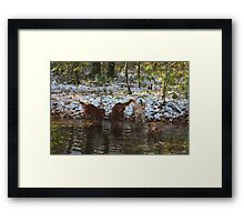 Surprise SnowStorm Golden Retriever Joy Framed Print